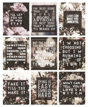 If I Stay by Gayle Forman Quotes