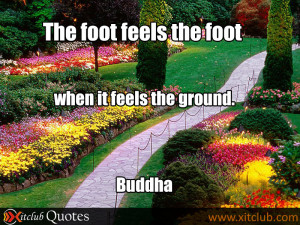 ... -20-most-popular-quotes-buddha-most-famous-quote-buddha-16.jpg