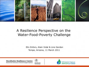 Resilience Perspective on the Water, Food, Poverty Challenge