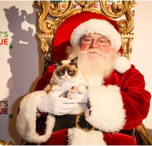 grumpy cat christmas Santa