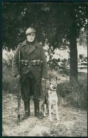 german shepherd in war quotes quotesgram