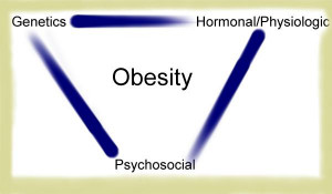 Causes Of Obesity In America