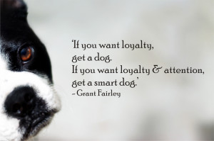 ... want loyalty and attention, get a smart dog - Quote by grant fairley