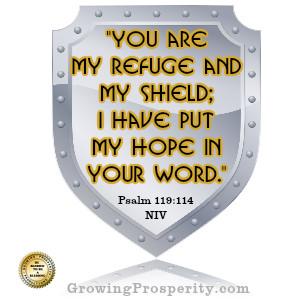 You Are My Shield – Psalm 119:114 Christian Meditation