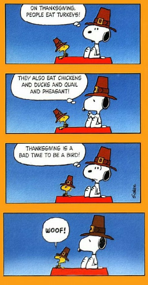 Humorous Thanksgiving From Flower Shop Network