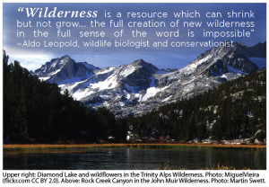 Rock Creek Canyon, John Muir Wilderness. with Leopold quote