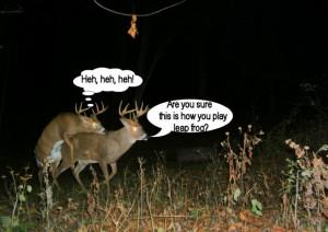 Deer Hunting Season Quotes
