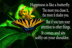Happiness is like a butterfly; the more you chase it, the more it will ...