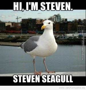 Very Funny Pics - Steven