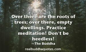 "... dwellings. Practice jhana, monks. Don't be heedless."" The Buddha"