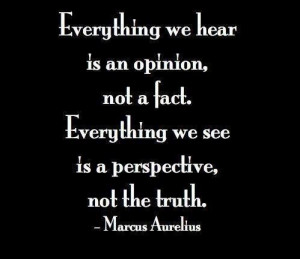 Everything we hear is an opinion, not a fact. Everything we see is a ...