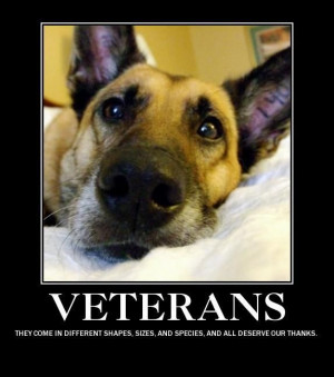 ... Military Dogs, Friends, Veterans Day, Pets, Veteransday, Real Heroes