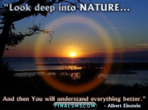 quotes of albert einstein look deep into nature famous people quotes