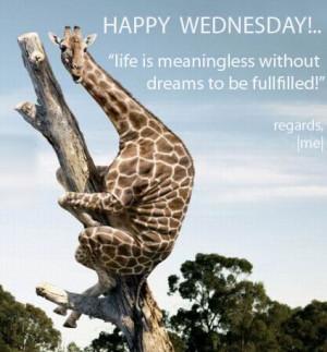 Myspace Graphics > Wednesday > funny wednesday Graphic