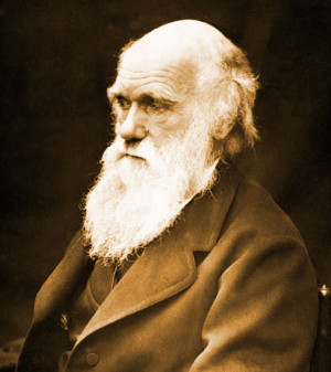 Darwin Theory And Atheism