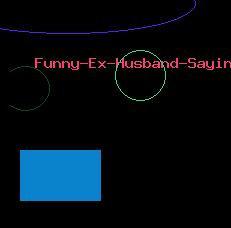 Funny Ex Husband Sayings 158a Funny Ex Husband Sayings