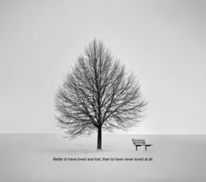 Life quotes memory of love quote with the picture of the unique tree