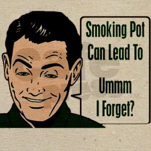 Smoking Pot Can Lead To Ummm I Forget