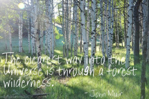 John Muir Quote via Imagine Childhood