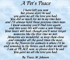 short poem from our pets that have preceded us. More