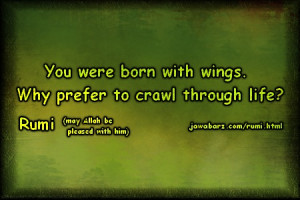 ... Why prefer to crawl through life? | Rumi Quotes on life & struggle