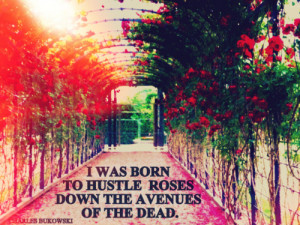 was born to hustle roses down the avenues of the dead.