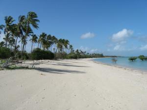 Zanzibar Holidays Image Click To Enlarge