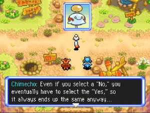 Pokemon Mystery Dungeon Quote