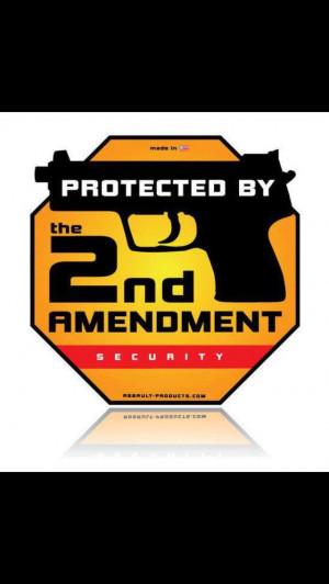 2nd Amendment 2A Pro gun