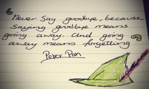 Don't say goodbye by JohnAckerley