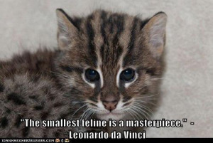 """The smallest feline is a masterpiece."""""""