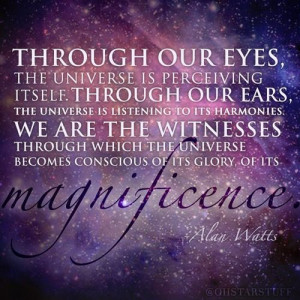 Through our eyes, the universe is perceiving itself. Through our ears ...