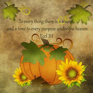 Autumn Harvest Pumpkin Digital Art