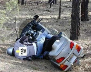 Funny Honda Goldwing Pictures