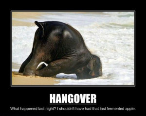 Hangovers_funny_picture