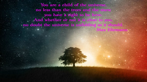You are a child of the universe…