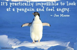 Penguin Love Quotes Penguin quote via www.