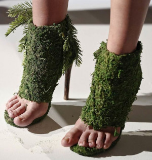 ... Green Shoes - Best funny, pictures, humor, jokes, hilarious, quotes
