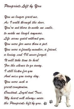 ... beautiful sentiment Favorite Quotes. Loss of a beloved pet. More
