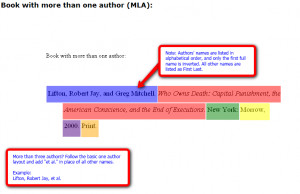 How do you a reference a quotation from a novel in an essay?