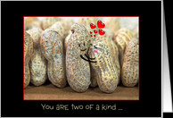 wedding anniversary for daughter and son-in-law with peanuts hugging ...