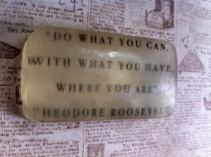 Resourcefulness Quotes Resourcefulness (roosevelt)