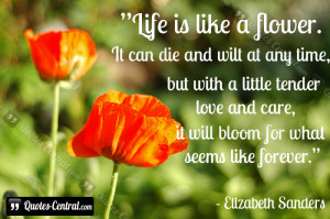 Life is like a flower. It can die and wilt at any time, but with a ...