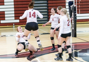 Championship Volleyball Quotes. QuotesGram