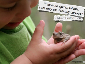 ... no special talents. I am only passionately curious. - Albert Einstein