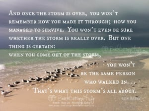 Stormy Seaside Seagulls Inspirational Coastal Quote Once Storm is Over ...