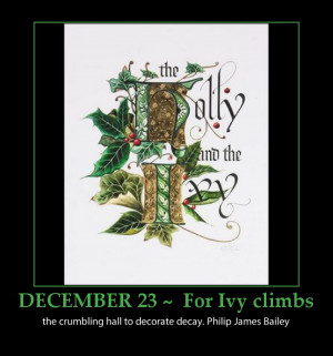beautiful holly-and-ivy-inspirational-quote-advent-calendar