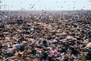 The Fresh Kills landfill, in all its putrid glory, 1990.