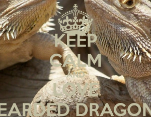 Dragon Cute Love Quotes. QuotesGram