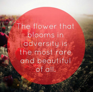 The Flower That Blooms In Adversity Is The Most Rare And Beautiful of ...